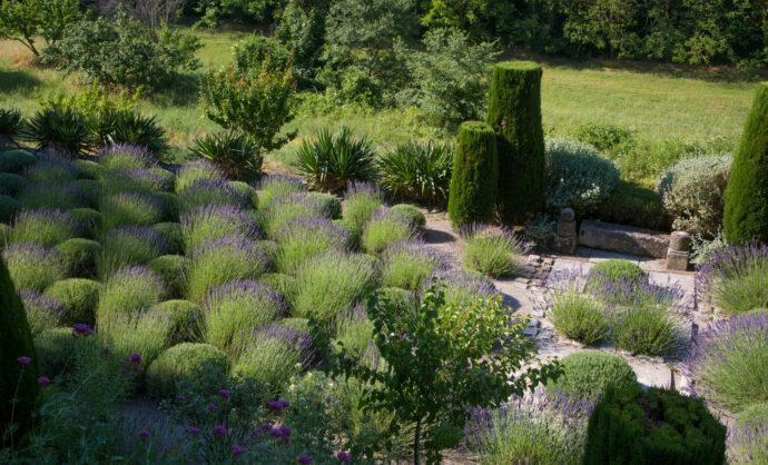 Parc et jardins en Vaucluse @ Hocquel