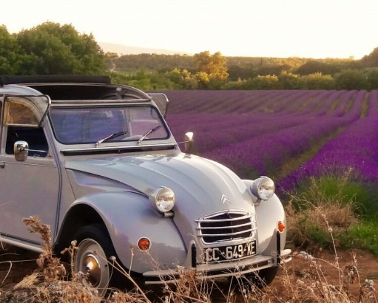 Provence in a 2CV or a vintage car